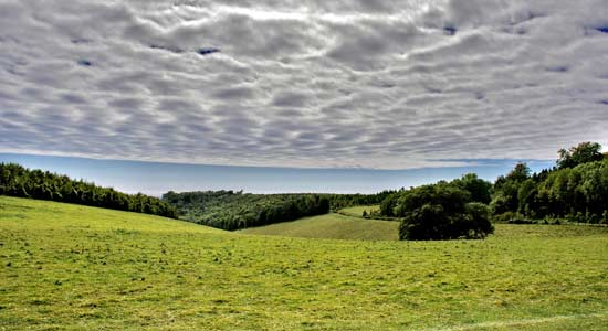 South Downs during summer near Arundel