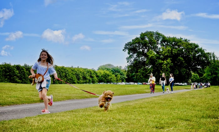 little girl running with dog on lead in park