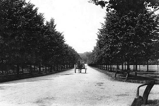 Mill road in 1908