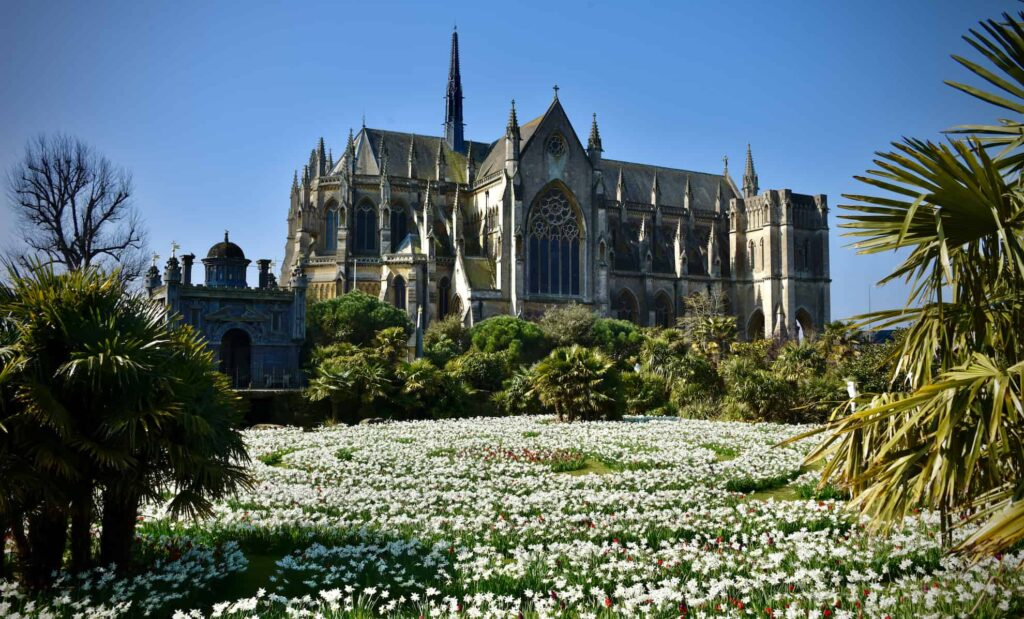 field of tulips with arundel cathedral in background
